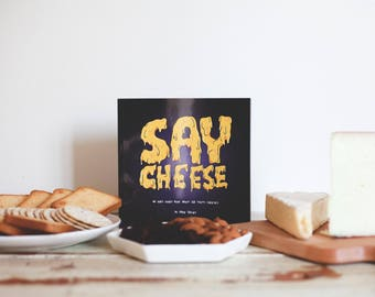 Say Cheese: An Ooey Gooey Book About 20 Tasty Cheeses