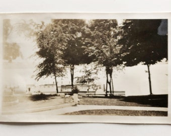 Original Vintage Photograph | Just Beyond the Trees