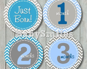 FREE GIFT Stickers Baby Monthly Stickers Baby Month Stickers Monthly Photo Sticker Baby Milestone Stickers Baby Month Photo Stickers