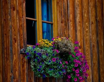 Austria Alps Mountain House - Flowers - Fine Art Print - Window Box