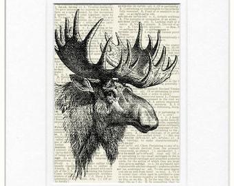 vintage moose portrait print