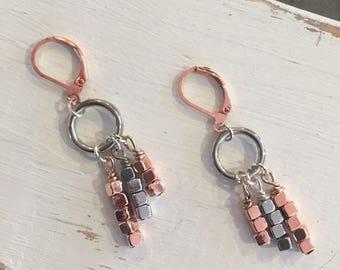 Rose Gold & Silver Dangle Lever Back Earrings