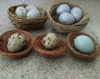 3 Eggs in Nest, ornament: Absolutely Stellar