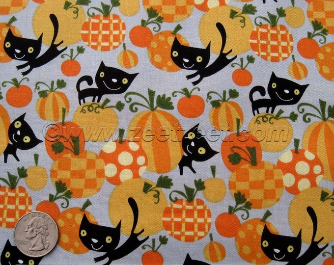 BLACK CAT Orange Pumpkin Grey Halloween - Cotton Quilt Fabric by the Yard, Half Yard, or Fat Quarter David Walker Free Spirit Cute
