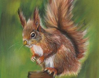 Red squirrel, ACEO print, Ltd Edition
