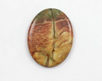 Picture Jasper Cabochon 30x40 Oval Owyhee Oregon Cripple Creek Jasper L10 Vintage Hand Cut Agate