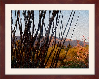 Painted Desert - framed or print
