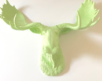 PASTEL PISTACHIO Large Faux Taxidermy Moose Head wall mountanimal wall hanging faux taxidermie wildlife kids wall decor office wall decor /