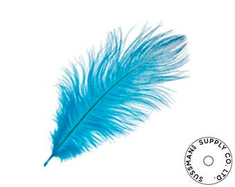 """Ostrich Feathers - Wholesale Wedding Feathers Ostrich Drab Plumes - Turquoise - 10pcs (14-17"""")"""