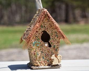 Edible Birdhouse | Squirrel Resistant | Bird House