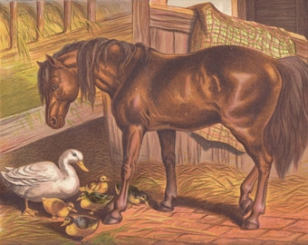 Horses Sweet Pony Horse in Stable with Baby Ducks Ducklings Baby Geese Goose Birds Animals Equine Antique Lithograph Art Print 1873