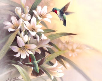 Humming Birds and  Lily   Archival Print of Watercolor Painting