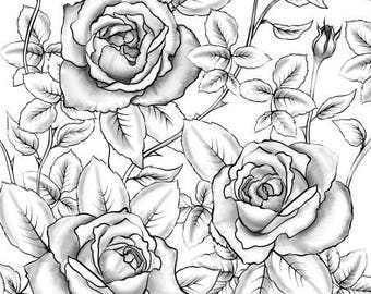 Rose coloring page | Etsy