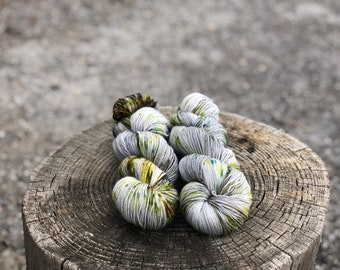 Lichen | Hand Dyed Yarn | 100 Grams | Varying Bases