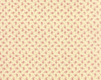 Polka dots and Paisley cotton fabric by Minick and Simpson for moda fabric 14804 12