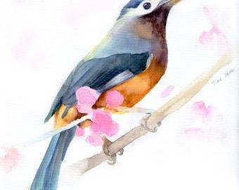 original watercolor painting print, watercolor prints, bird  art, wall art, animal painting