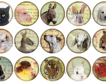 Wild Animal Magnets, Pins or Flatbacks, 1 Inch, 5ct or 12ct available