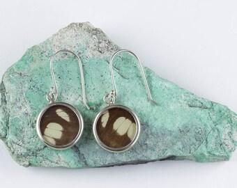 3.75cm Real Butterfly Wing Earrings in Sterling Silver - Butterfly Earrings & Butterfly Jewelry J770