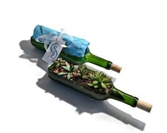 Wine Bottle Succulent Planter Kit - DIY Succulent Planter - Wine Bottle Succulent Planter