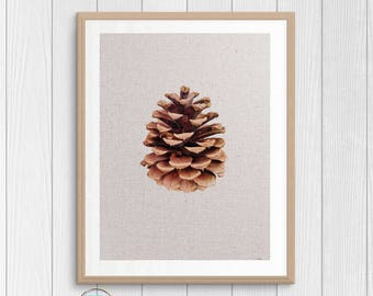 Pine Cone Print - Nature Photography - Minimalist Art - Nature Print - Printable Art  - Forest Print - Pine Cone Poster - Instant Download