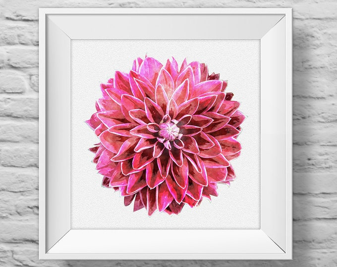 DAHLIA IN PINK - unframed square art print, inspirational, nature, floral, watercolor, photography, wall decor. (R&R0131)