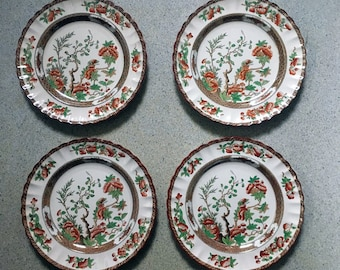 Spode India Tree dinner plates // OLD STAMP // lot of 4