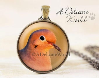 Mourning Dove Jewelry Pendant in Bronze, Nature Lover Gift for Women, Large Round Necklace with Chain, Wild Bird Photo in Glass