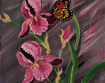 Pink Iris with butterfly