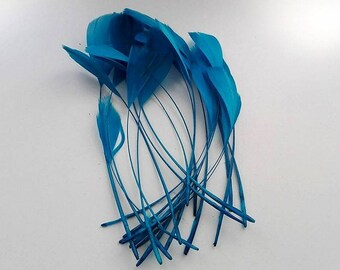 25 Rooster turquoise feathers ~ 15cm