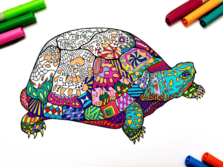 Box Turtle PDF Zentangle Coloring Page