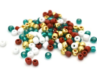 10 gr large glass 4mm turquoise, gold, Brown and white seed beads / MPERRO040