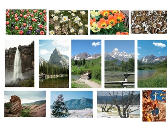 Gift certificate for professionally printed nature photography -- 5x7 or 8x10 -- 13 image options -- matte finish print