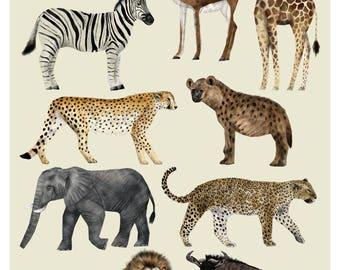 African Wildlife, Animal Illustration, Animal Print, Safari Wildlife, Safari Print, Children's Decor, Wildlife Print