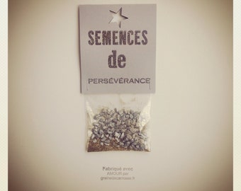 Magic of perseverance seed packet