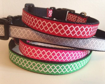 1/2 inch Small Quatrefoil Dog Collar in Gray, Pink, Red or Green