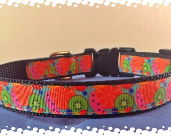 3/4 Wide Custom Made Adjustabe Tutti Fruiti Grosgrain Dog Collar