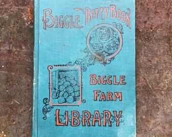 Biggle Berry Book