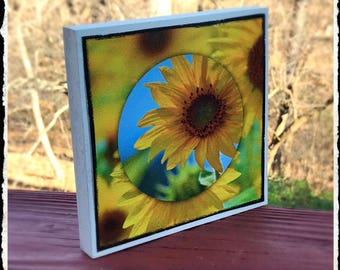 sunflower photo block wall hanging on Canvas print