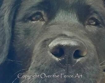 Dog Card Black Labrador Puppy Eyes Fine Art Photo Greeting Card Black Lab Card
