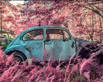 Print - VW Graveyard - Blue in Pink