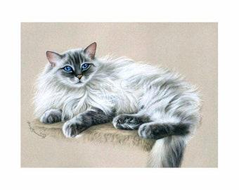 Ragdoll Cat Print Fluffy by Irina Garmashova