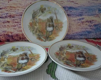 Collectible Squirrel Plate, Wildlife of Britain