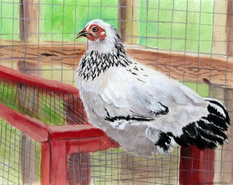 Columbian Wyandotte hen, Lavern, reproduction of original painting