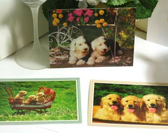 Set of 3 Blank Puppy Greeting Cards - note cards - no envelopes