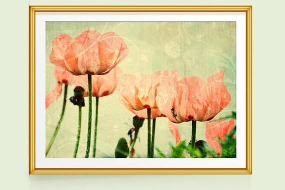 Poppy Print Poppy Wall Art Poppy Decor Poppies Art Fine
