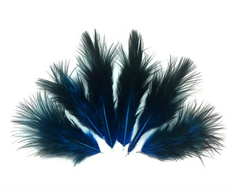 Blue Fluffy Feathers, 1 Dozen - Solid Turquoise & Black Rooster Chickabou Fluff Mini Feathers : 760