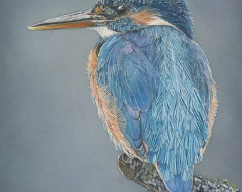 "Kingfisher watercolor bird Print 5x7 of watercolor painting 5"" by 7"""