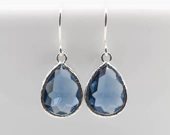 Earrings Silver Blue dark blue navy pierced earrings