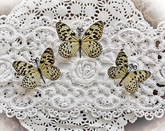 Reneabouquets Butterfly Set Glamorous Premium Paper Butterflies