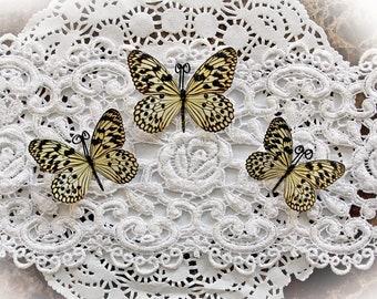 Reneabouquets Butterfly Set Glamorous Premium Paper Butterflies